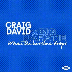 Craig-David-x-Big-Narstie-When-the-Bassline-Drops-2015-1200x1200-300x300