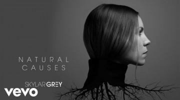 NandoLeaks New Music: Skylar Grey – Kill For You ft. Eminem